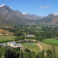 WINE REGION - divine vineyards and top restaurants